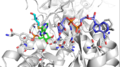 1NFB IMPDH Active Site.png