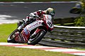2008 Brands Hatch WSBK - Troy Bayliss (1).jpg