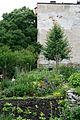 2009 Cooper community garden BostonMA 4048887552.jpg