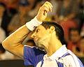 2011 Australian Open IMG 0069 2 2 (5444729386).jpg
