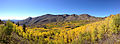 2014-10-04 14 00 50 Panorama of Aspens during autumn leaf coloration and the Copper Mountains from Charleston-Jarbidge Road (Elko County Route 748) in Copper Basin about 10.7 miles north of Charleston, Nevada.JPG