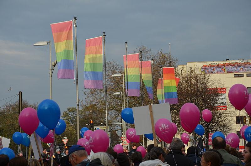 """Datei:2014-11-22 angebliche """"Demo für Alle""""-Kundgebung in Hannover, (1005).JPG"""