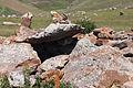 2014 Prowincja Sjunik, Zorac Karer, Prehistoryczny kompleks megalityczny (036).jpg