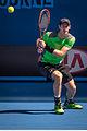 2015 Australian Open - Andy Murray 6.jpg