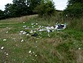 2015 London-Woolwich, Woolwich Common 05.JPG