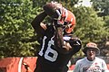 2016 Cleveland Browns Training Camp (28407689700).jpg
