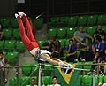 2019-06-27 1st FIG Artistic Gymnastics JWCH Men's All-around competition Subdivision 4 Horizontal bar (Martin Rulsch) 236.jpg