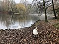 2020-12-12-Hike-to-Rheydt-Palace-and-its-surroundings.-Foto-46.jpg