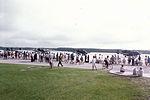 353d TFS last planes to leave 1992.jpg