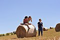 3 Girls And A Bale Of Straw (167380587).jpeg