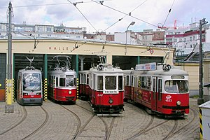 Tram - Trams in Vienna (Wiener Straßenbahn)