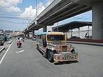 6264NAIA Expressway Road, Pasay Parañaque City 42.jpg