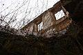 649viki Ruiny zamku w Pankowie. Foto Barbara Maliszewska.jpg