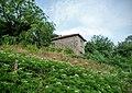6571 Kamilski Dol, Bulgaria - panoramio (31).jpg