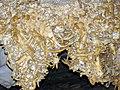 88 Helictites (travertine) 14 (8324757741).jpg