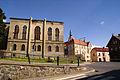 9529viki Dzierżoniów. Foto Barbara Maliszewska.jpg