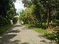 9759Poblacion III Del Carmen, Alaminos, Road 02.jpg