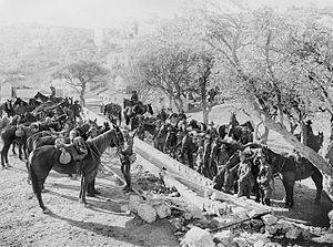 ANZAC Mounted Division - Men of the division watering their horses at the foot of Mount Zion, January 1918.