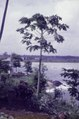 ASC Leiden - F. van der Kraaij Collection - 02 - 041 - Peninsula Harper City with the Pioneer Monument - Harper, Maryland County, Liberia, 1978.tiff