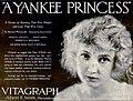 A Yankee Princess (1919) - Ad 2.jpg