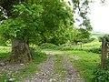 A farm track near Plaistow Barton - geograph.org.uk - 812956.jpg