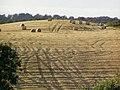 A hillside in Gilford - geograph.org.uk - 545005.jpg