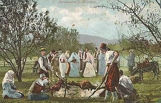 Culture of Bosnia and Herzegovina culture of an area