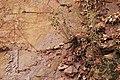 Abgerutschte Sandsteinplatten am Hang von Schloss Marienburg.jpeg