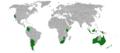 Acacia-baileyana-range-map.png