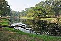 Acharya Jagadish Chandra Bose Indian Botanic Garden - Howrah 2011-01-08 9779.JPG