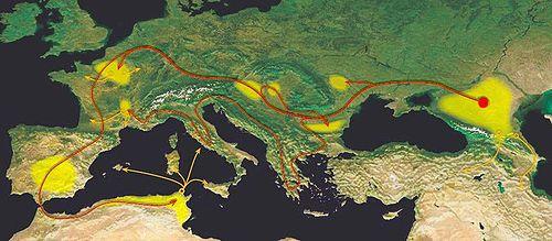 Le périple des Alains dans le contexte des    Grandes migrations en Europe   , annonçant le Haut Moyen Âge, est un des trajets les plus étendus :   en rouge, figurent les migrations ; en orange, les expéditions militaires ; et, en jaune, les tentatives de sédentarisation  .