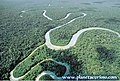 Amazonas032.jpg