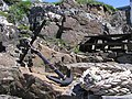 Anchor and ropes, Dunserverick - geograph.org.uk - 1339172.jpg