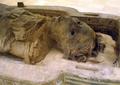 AncientEgyptianMummy-Antjau-CloseUp-ROM.png