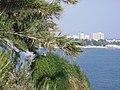 Antalya - 2010 - panoramio (10).jpg
