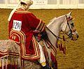 Arabian Costume Horse (2486178563).jpg