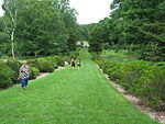 ArboretumGrass.JPG
