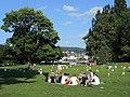 Arboretum - Grün Stadt Zürich 'Wurst Egal' 2013-08-20 17-30-01 (P7700).JPG