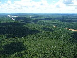 Alto Paraná Atlantic forests - Aerial view of Iguaçu National Park, Brazil.