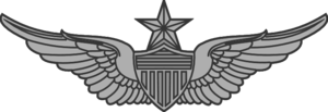 United States Aviator Badge - Army Senior Aviator