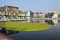 Arrested Kachuripana - Pond Shivaganga - Bhukailash Rajbati Estate - Kidderpore - Kolkata 2016-01-24 9231.JPG