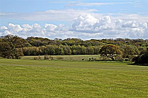 Arrowe Park - Image: Arrowe Park (geograph 2949698)