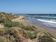 Young teen little girl beach