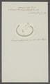 Ascaris tricuspidata - - Print - Iconographia Zoologica - Special Collections University of Amsterdam - UBAINV0274 104 03 0013.tif