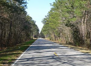 National Register of Historic Places listings in Dorchester County, South Carolina - Image: Ashley River Road 7.6 mi N of Bees Ferry Rd 2