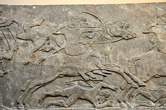 Military history of the Neo-Assyrian Empire - Assyrian cavalry charge the enemy, dating back to the reign of Ashurnasirpal II, 865–860 BC. In this period, cavalry was relatively new. Detail of a gypsum wall relief from Nimrud, Iraq, currently housed in the British Museum
