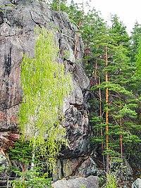 Suomalainen Muinaisusko