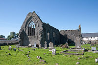 Athenry Priory NE 2009 09 13.jpg