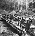 Australian soldiers and Papuan carriers crossing the Brown River in October 1942.JPG
