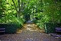Autumn, Stanley Park Oct, 2015 - 21332647134.jpg